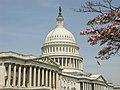 Capitol 2004 - panoramio.jpg