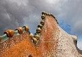 Casa Batllo Roof 2 (5839857177).jpg