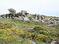 Cathanger Rock (2) - geograph.org.uk - 1426294.jpg