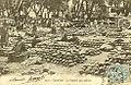 Cavaillon 1906 Maché aux melons.jpg
