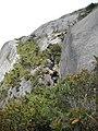 Cavalinho^ - panoramio.jpg