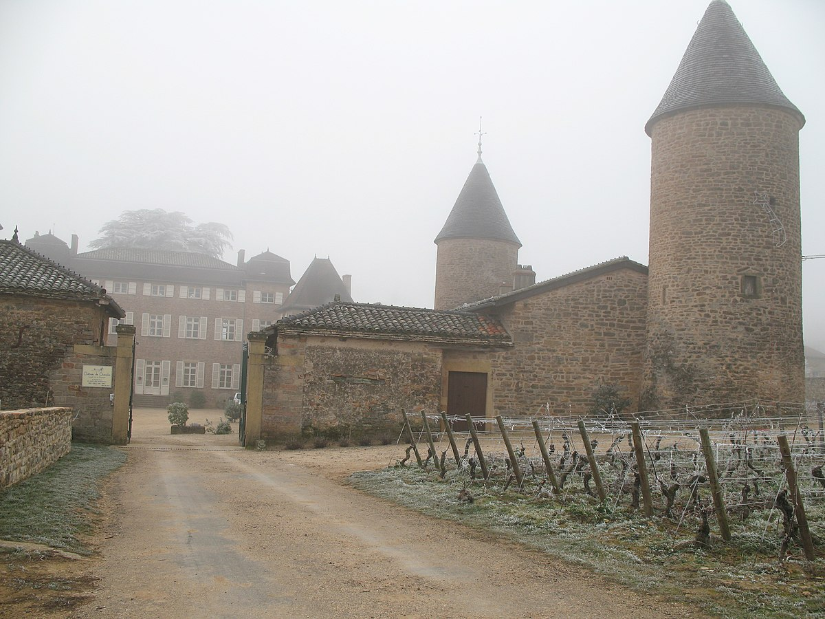carte viticole bourgogne