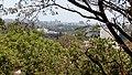 Chattrushrungi Temple view Pune.jpg