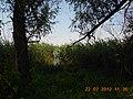 Cherkas'kyi district, Cherkas'ka oblast, Ukraine - panoramio (13).jpg