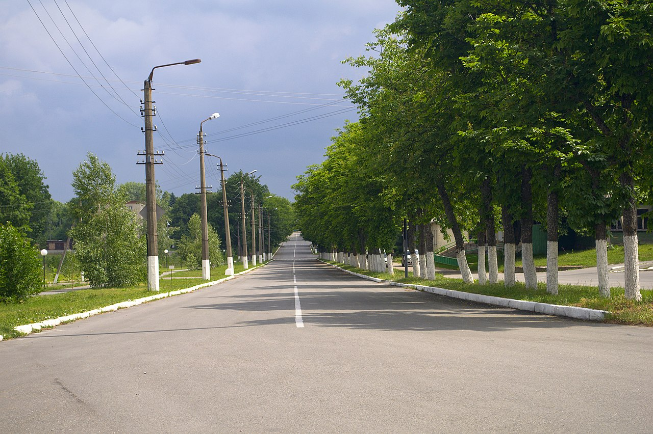 Дорога в Чернобыле