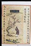 Chinese Materia Dietetica, Ming; Plum rain water Wellcome L0039362.jpg