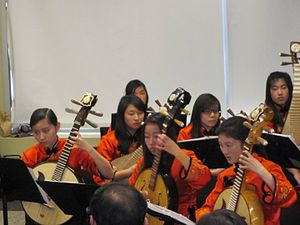 Chinese orchestra - Musicians in a plucked string section in a Chinese orchestra.