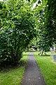 Church of St Andrew's, Boreham, Essex - churchyard path.jpg