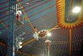Cirkus Scott augusti 1983b.jpg