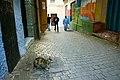 Citizen of Tangier-2.jpg