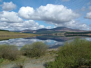 Clatteringshaws Loch near New Galloway - geograph.org.uk - 138350.jpg