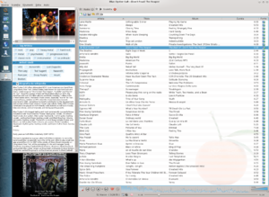 Media player (software) - Clementine v1.2, an audio player with a media library and online radio
