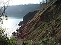 Cliffs at Little Oddicombe Beach - geograph.org.uk - 675616.jpg