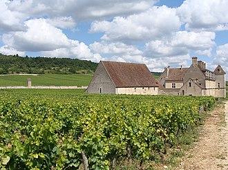 Clos de Vougeot - Château du Clos de Vougeot