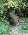 Coastpath in coombe near St George's Well - geograph.org.uk - 1468309.jpg
