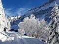 Col du Pillon neige.jpg