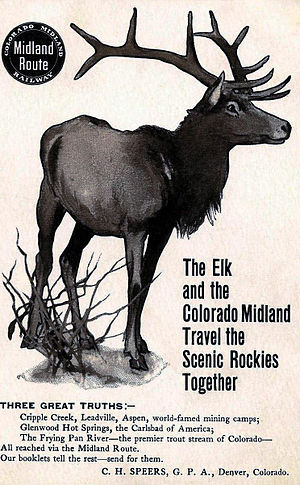 Colorado Midland Railway - Circa early 1900s postcard ad for the line.