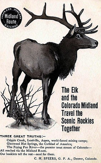 Colorado Midland Railway - Circa early 1900s postcard ad for the line.