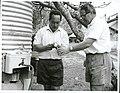 Cook Island Medical Officer of Health, Dr. A. Guinea (right), and Health Inspector, Mr. Tuterua Arahu. 1965.jpg
