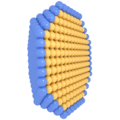 Core-shell nanoparticle.png