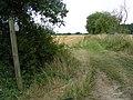 Country Footpath - geograph.org.uk - 1436273.jpg