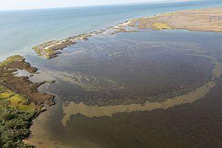 Glenn Martin National Wildlife Refuge