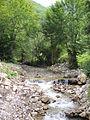 Crna Rijeka Gorge 3.JPG