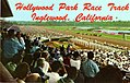 Crowds at the Races, Hollywood Park Race Track (NBY 1987).jpg
