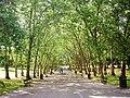 Crystal Palace Park.jpg