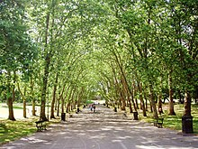 Photograph of a wide tree-lined road running through Crystal Palace Park.
