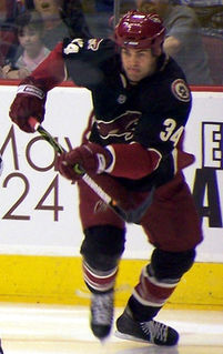 Daniel Winnik Canadian ice hockey player