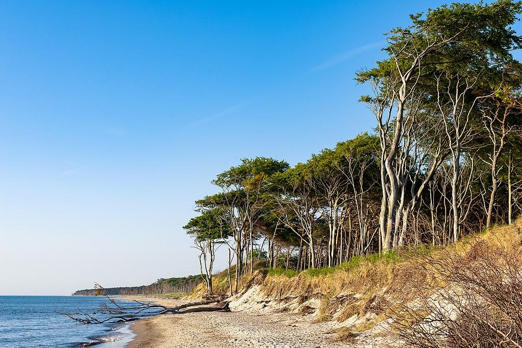 Ostseestrand auf Darß (zwischen Stralsund und WiIsmar)