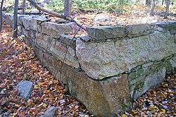A stone retaining wall with dead leaves on top and bottom