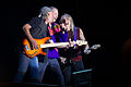 Deep Purple - MN Gredos - 07.jpg