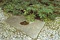 Defense 33855 Jardins-de-l-Arche-pierre-aux-oiseaux-et-berces-67.jpg
