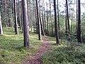 Degučių sen., Lithuania - panoramio (160).jpg