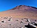 Desierto de Dalí Reserva nacional de fauna andina Eduardo Abaroa 12.jpg