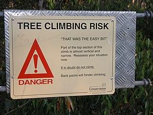 Diamond Tree - Sign suggesting caution near the top platform of the Diamond Tree