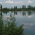 Die Anilin hinter dem Teich - panoramio.jpg