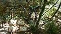 Dinopark, Funtana, Croatia (dinopark.hr) - panoramio (17).jpg