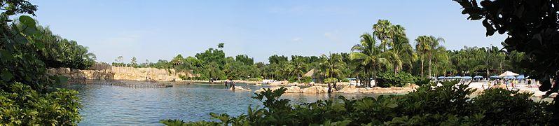 File:Discovery Cove, Orlando - panoramio (7).jpg