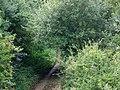 Dismantled railway line, Pentridge Farm - geograph.org.uk - 1465954.jpg
