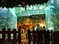 Disney Animal Kingdom Rainforest Cafe 2.jpg