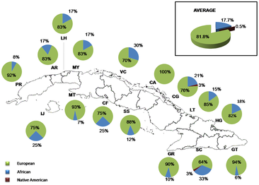 Distribution of ancestral contributions in Cuba as inferred from Y-chromosome markers.png
