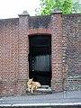 Dog in door - geograph.org.uk - 453872.jpg