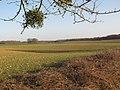 Doline près Marchais-Beton-nord D119-1.JPG