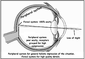 Peripheral vision - Image: Double system e
