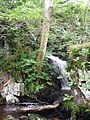 Dow Linn (Lower Falls) - geograph.org.uk - 951357.jpg
