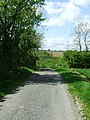 Down Hill Road - geograph.org.uk - 1286716.jpg
