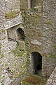 Downstairs Blarney Castle (8042560107).jpg
